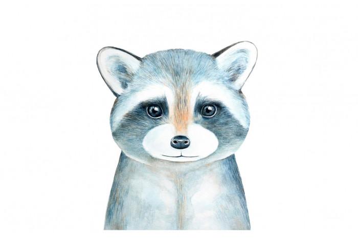 Картина Енот голубой